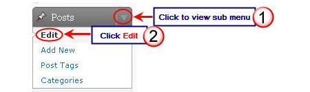 Image of edit posts