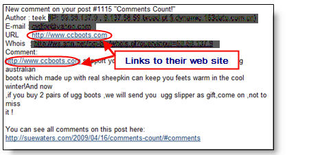 Image of spam comment