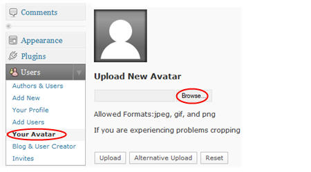 Browse to locate avatar image