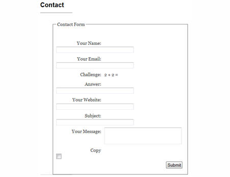 Example of a contact form