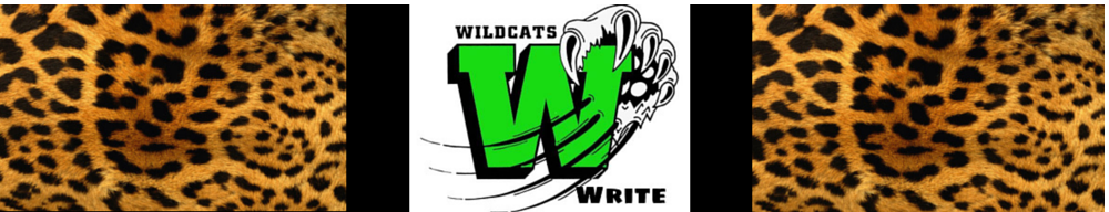 Wildcats Write screenshot