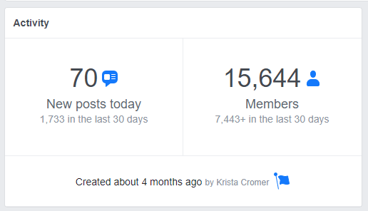 Screenshot of Activity information on a Facebook group