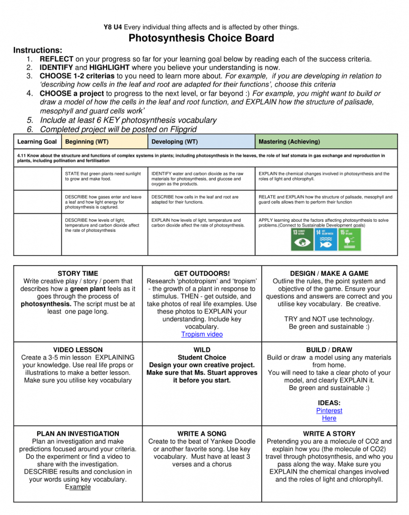Photosynthesis Choice Board worksheet from Kim in Seoul