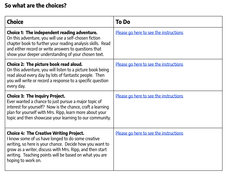Four literacy choices by Pernille Ripps